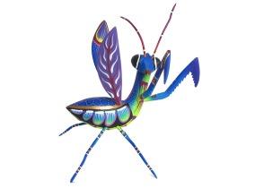 05-mantis-blas-1_960