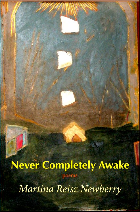 cover of Never Completely Awake