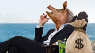 greedypigbankers